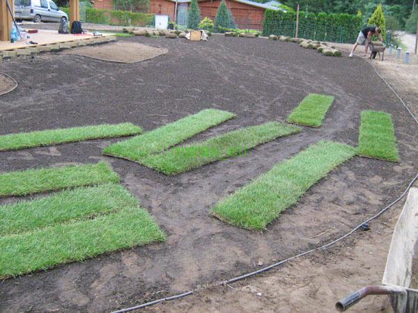 przygotowanie podłoża dla trawy z rolki
